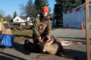 2012 Mancelona Buck Pole_227