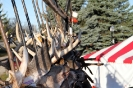 2012 Mancelona Buck Pole_452