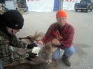 2012 Mancelona Buck Pole_7