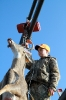 2012 Mancelona Buck Pole_83
