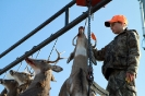 2012 Mancelona Buck Pole_87